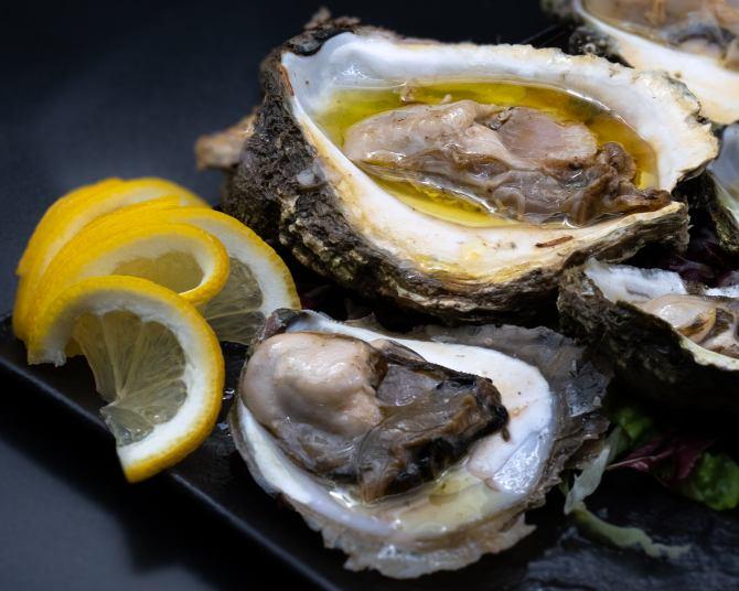 Oysters, Dalmatian seafood delicacy, raw oysters, www.zadarvillas.com