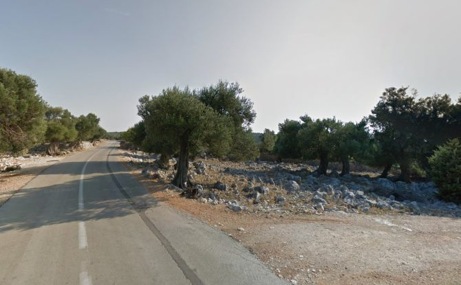 Lunjski maslinici | Screenshot: Google Street View